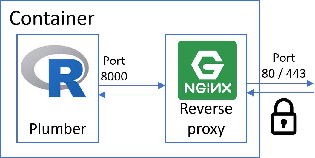 使用SSL和基本身份验证保护Dockerized Plumber API